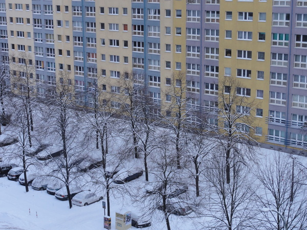 Snow from my window