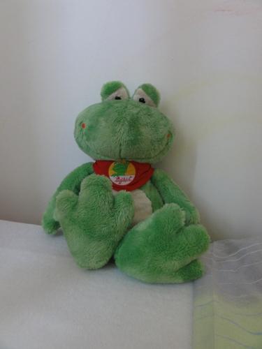 Frosch aus Bad Honnef