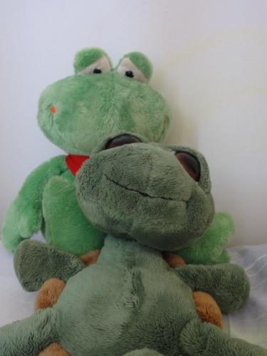 Frosch und Kröti in  Bad Honnef