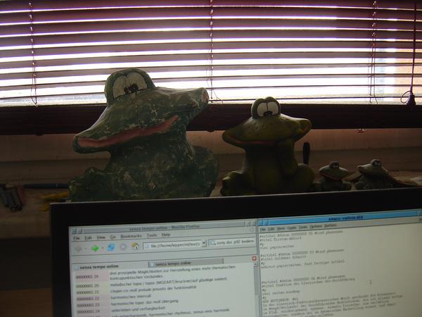 Froggies watching computer work