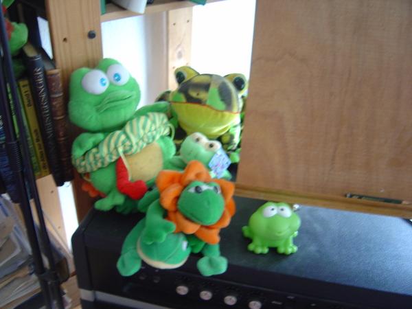 Froggies watching piano work