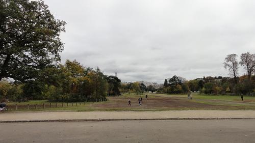 Bois de Boulogne / Lac Inférieur