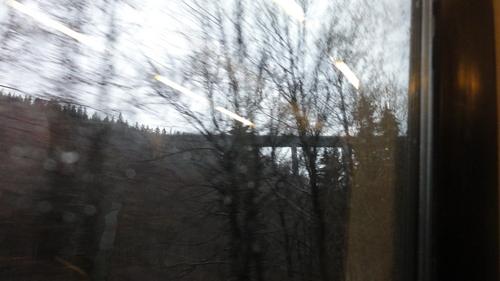 Talbrücke Wilde Gera, vom Zzg