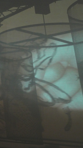 documenta 13, Indian gods?