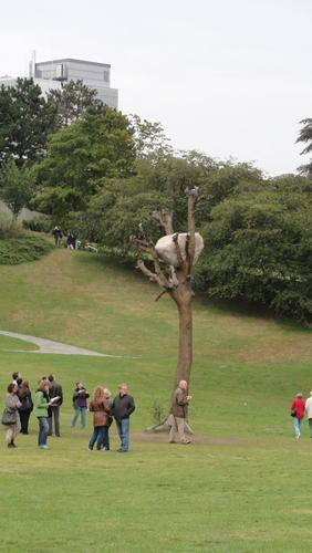 documenta 13, tree with stone