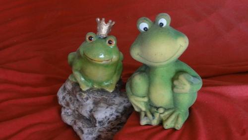 Zwei Froschis
