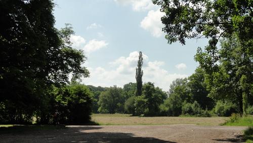 Weimar, Goethes Pappeln