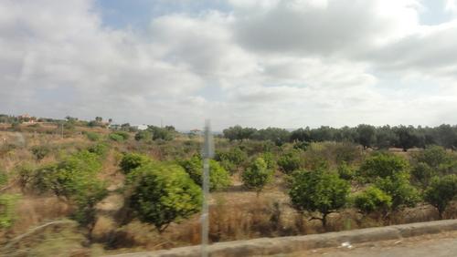 Towards Faro