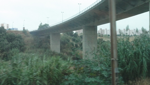 Train Lisboa to Faro