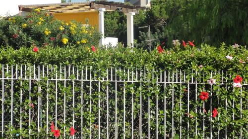 Vilamoura Villa