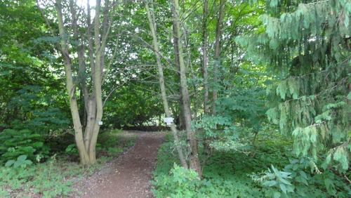 Cottbus, Spreeauenpark