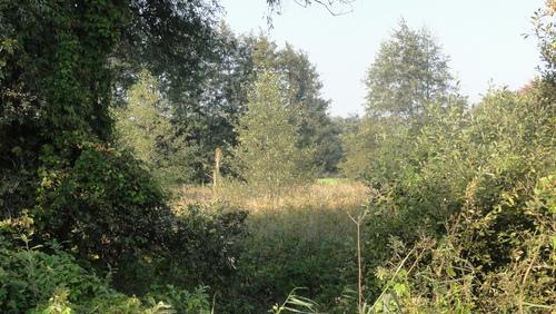 Wildau, Krugstelle
