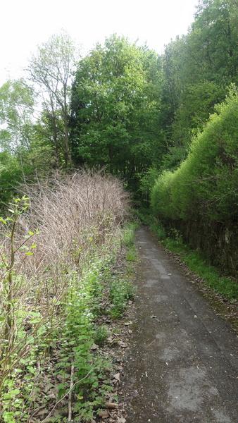 Kettwig, Anfang Wanderweg A2