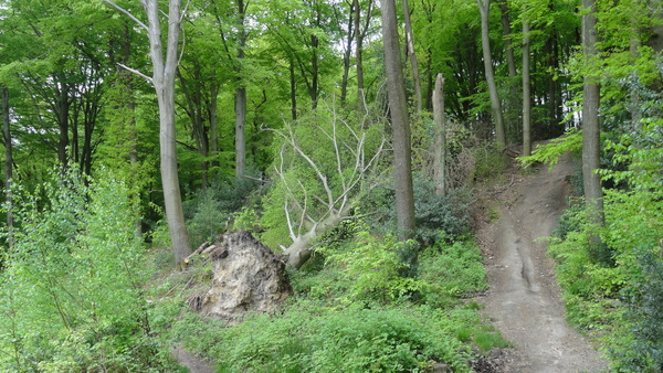 Kettwig, Wanderweg A2, Nasse Stelle