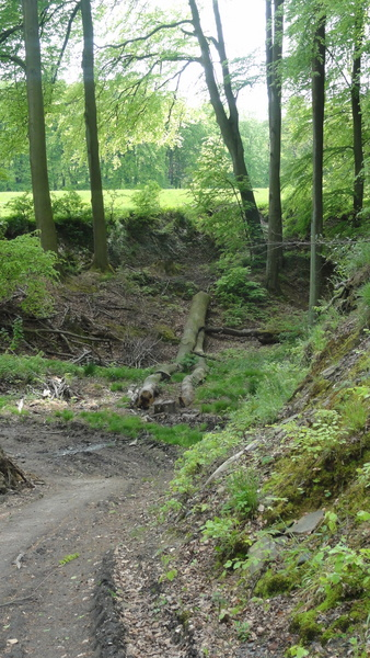 Kettwig, Wanderweg A2, Kehre