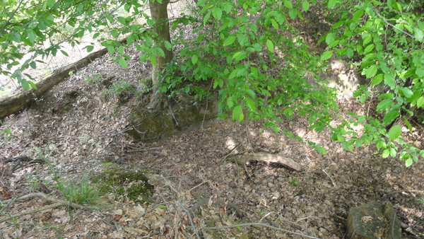 Alter Park auf Pastoratsberg, alter Zierteich