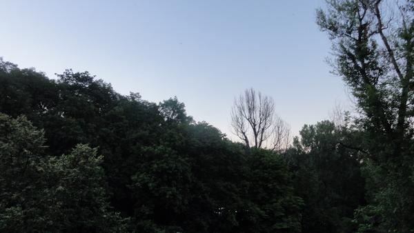 Warszawa, am Ziemi PAN
