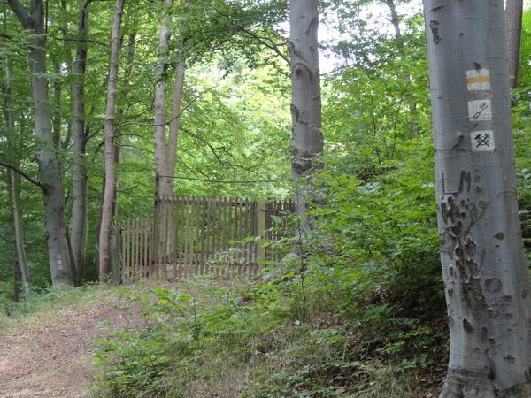 Ilmenau, Goethe Wanderweg, Wanderzeichen