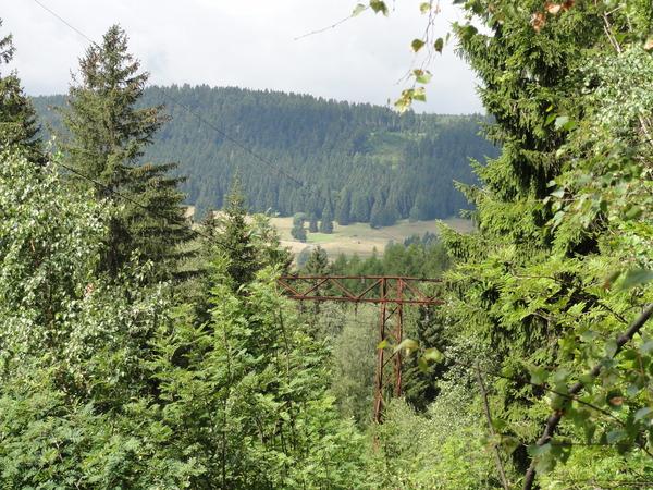 Ilmenau, Goethe Wanderweg, rostiger Strommast mitten im Wald