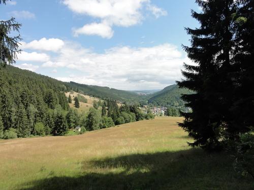 Ilmenau, Goethe Wanderweg bei Manebach