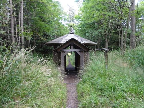 Ilmenau, Goethe Wanderweg, auf dem Kickelhahn