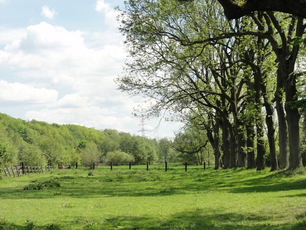 Zwischen Dahlhausen und Isenburg