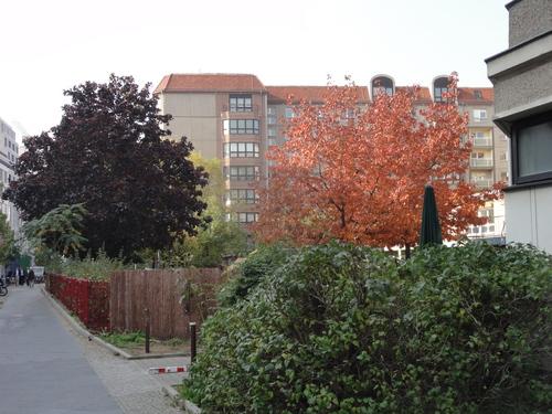 Voss-Straße