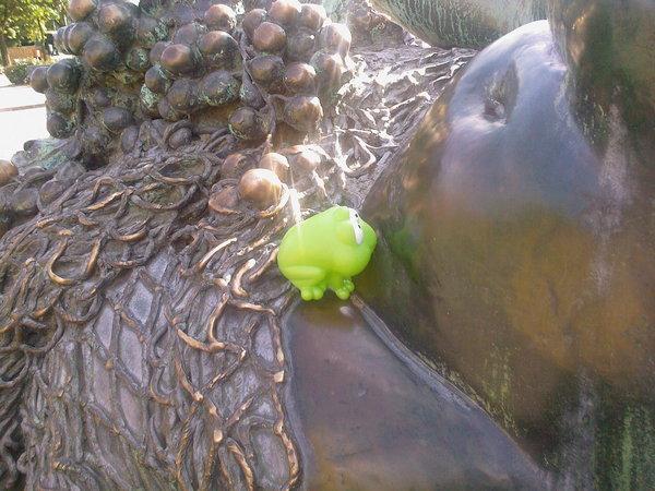 Frosch und Rhein