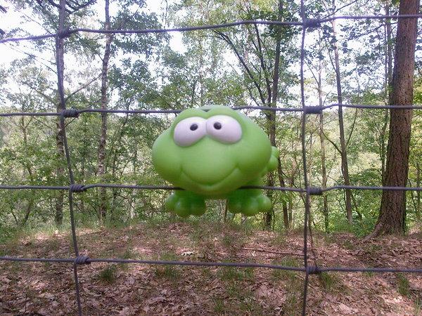 Frosch in der Klemme - 2